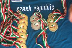 medailová sbírka